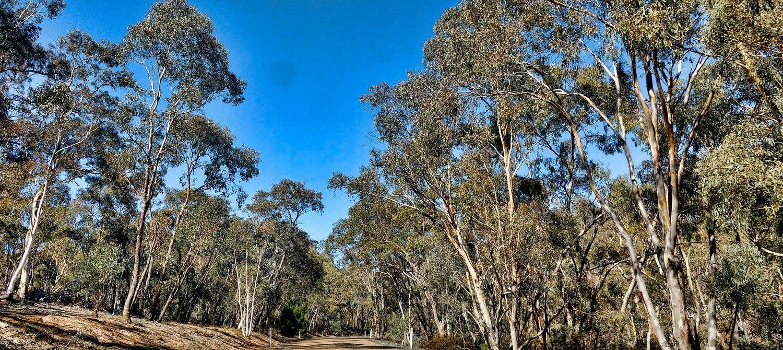 Australia Just Endured Its Driest Spring on Record