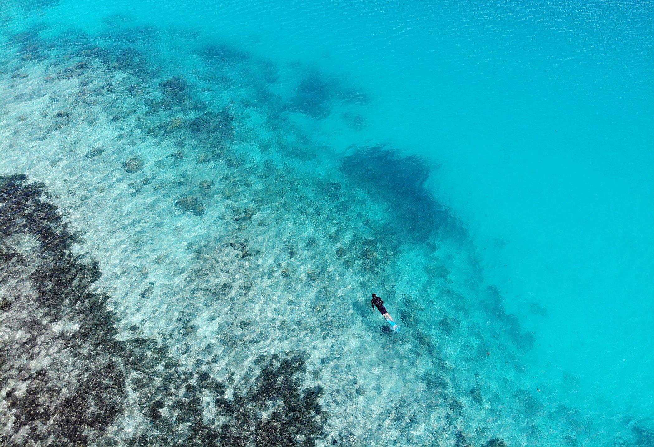Seychelles-Conservation-Environmental-Photos-February.jpg