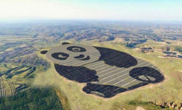 Artikel: This Panda Bear Is Actually a Solar Farm and It's Saving China