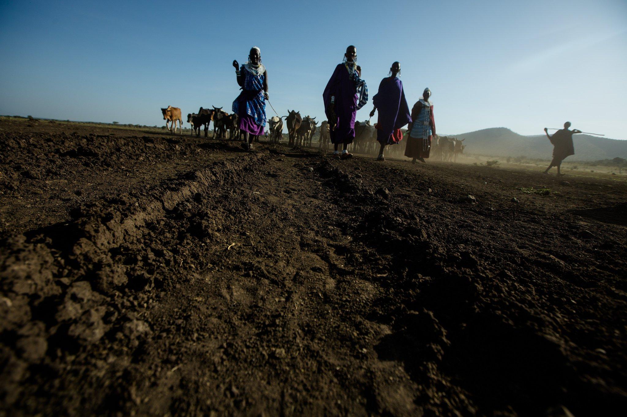 Soil in Tanzania.jpg