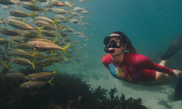 Article: Australian Model and Environmentalist Laura Wells Talks Ocean Conservation and Great Reef Census
