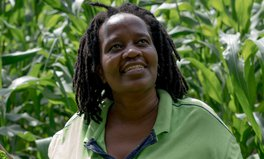 Artikel: How This South African Woman Grew a Farm in a Plastic Packet