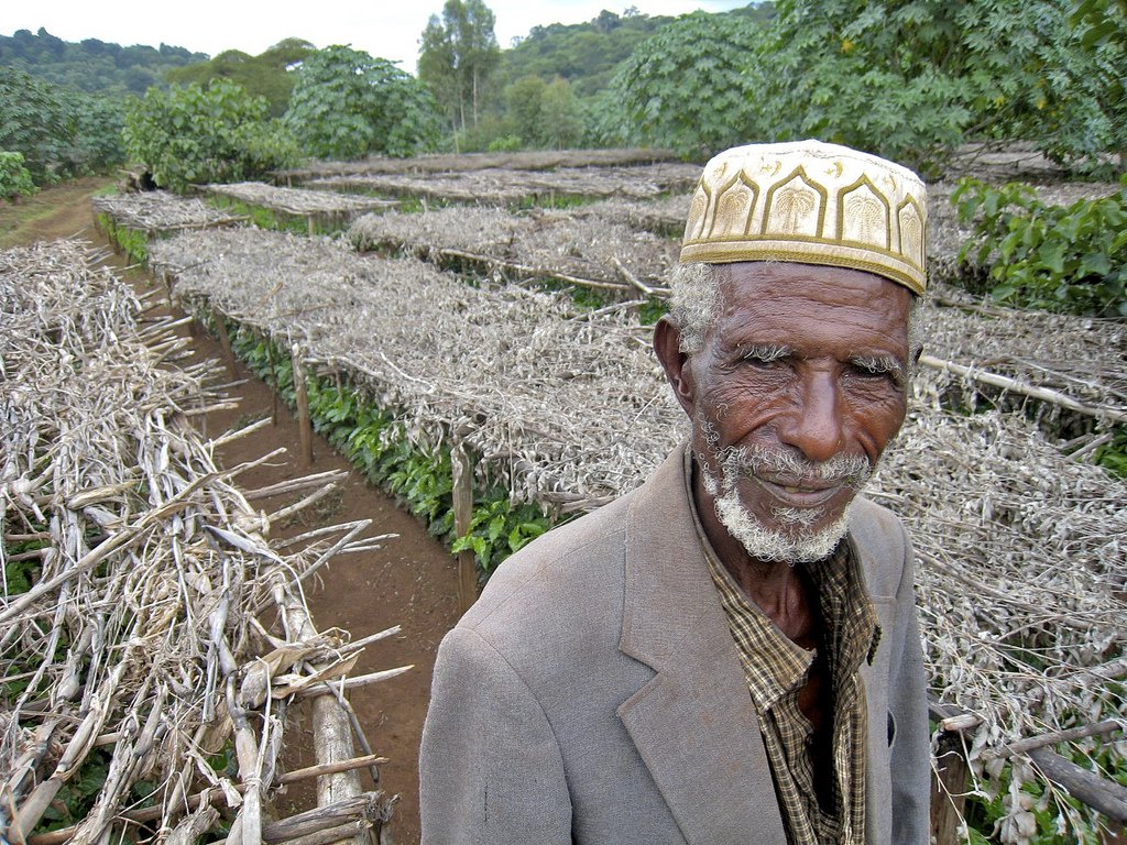 Coffee farmer in Ethiopia