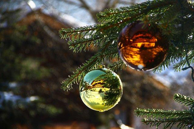 holiday tips xmas tree