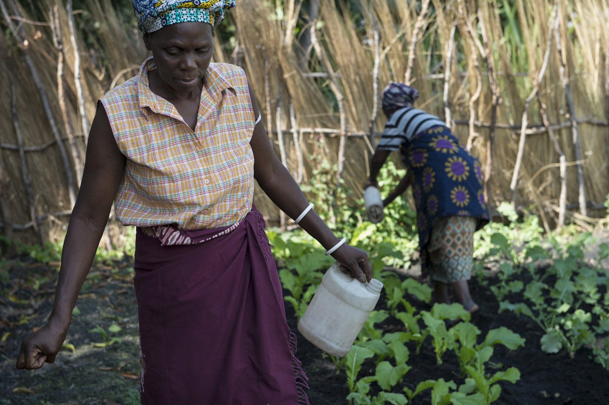 women-farmers-community-garden-zambia-flickr