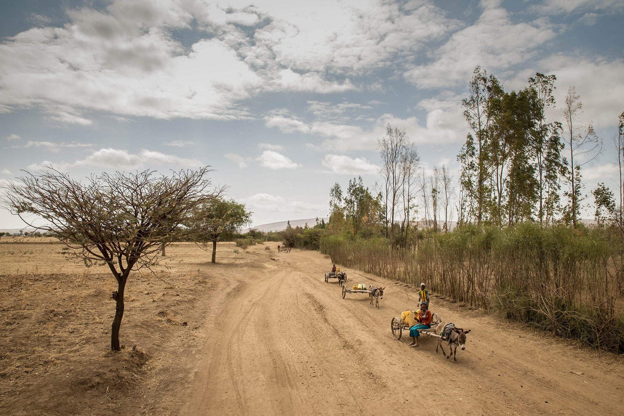Climate-Change-Refugees-Ethiopia.jpg