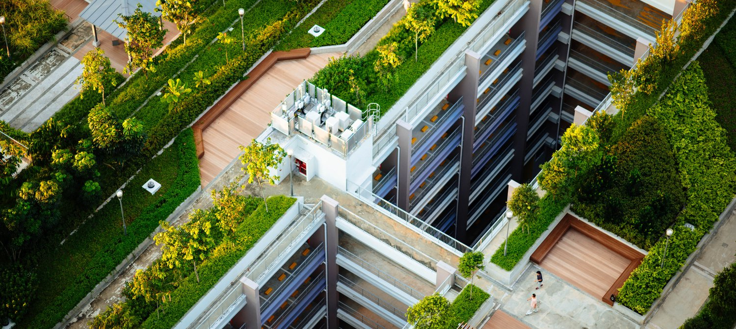 6 Ways Green Roofs Protect Cities From Climate Change