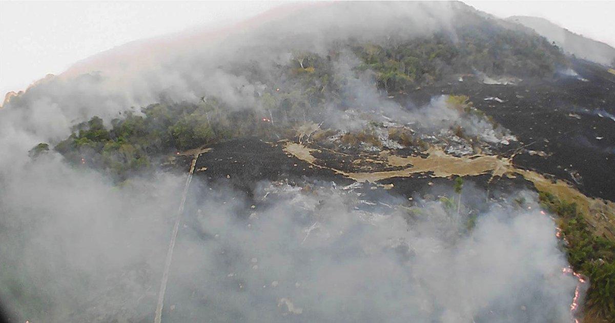 Amazon-Environment-Degredaton-Wildfires-Social-Share.jpg