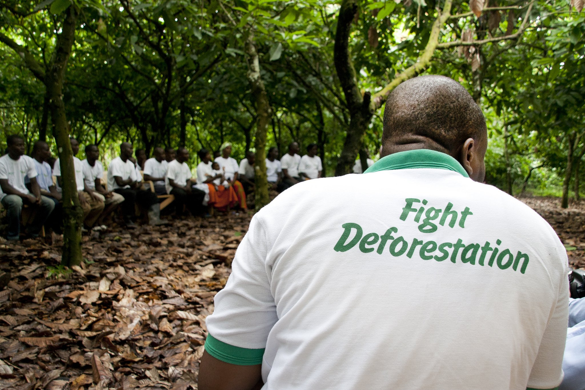 Fight Deforestation - Rainforest Alliance.jpg