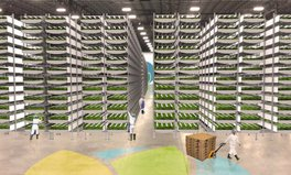 Article: World's largest vertical farm can produce up to 2 million pounds of greens a year