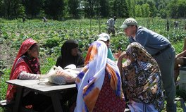 Article: How Gardening Is Helping Somali Refugees Find Their Roots in New York