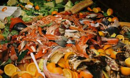 Article: EU Parliament Backs Campaign to Halve Food Waste, With More Support Than Expected
