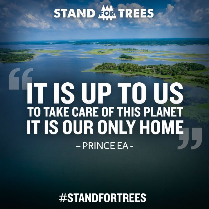 Stand for trees it is up to us.jpg