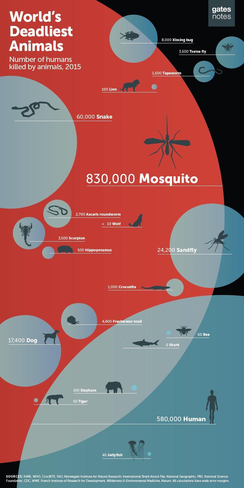 Mosquitos.jpg