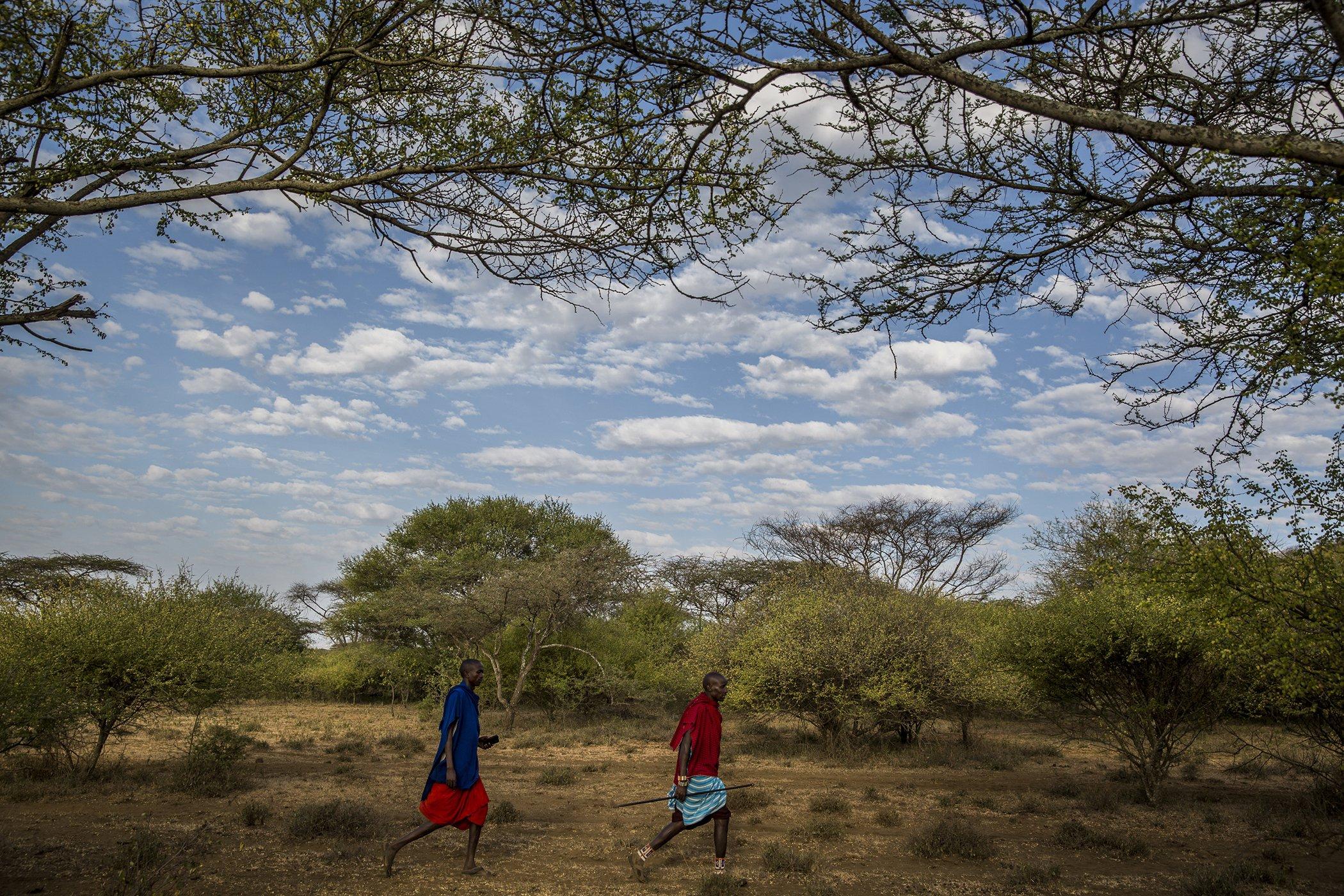Chyulu Hills-Kenya-Conservation-Covid-19-Impacts-003.jpg