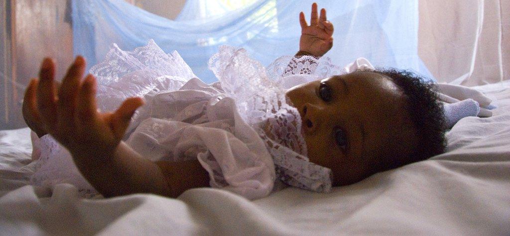 malaria mosquito net_hero.jpg