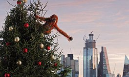 Article: After Banned Palm Oil Ad, Iceland Has Let an 'Orangutan' Loose in London