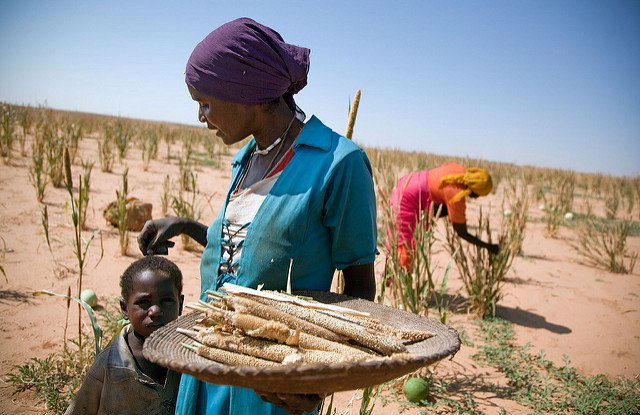 africa-climate-change-farming