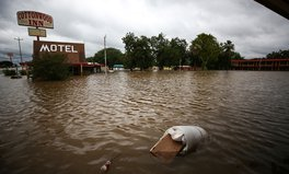 Article: Here's What You Need to Know About Food and Water Safety After Hurricane Harvey
