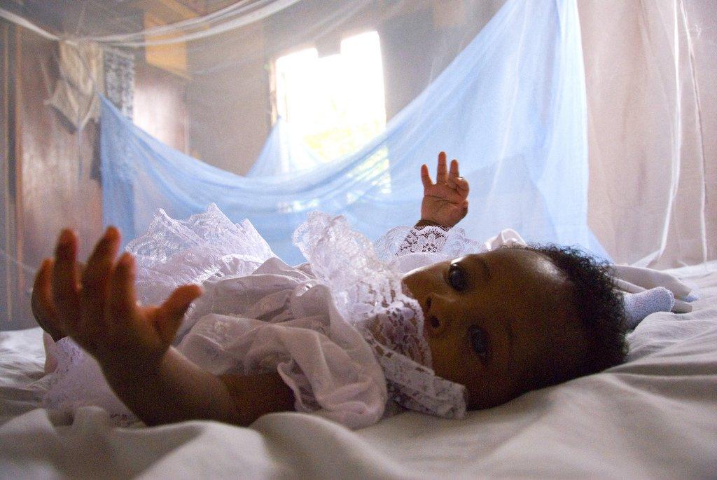 malaria mosquito net.jpg