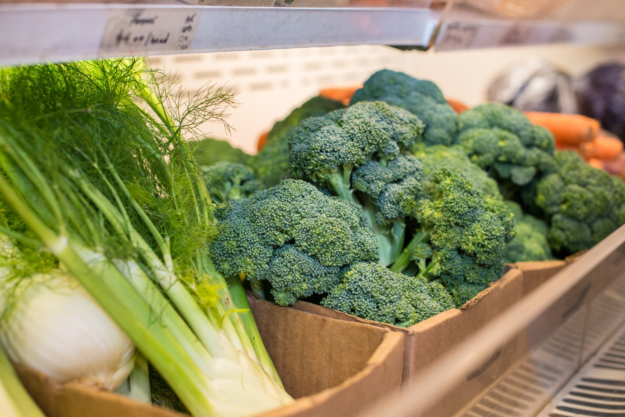 usda_broccoli_fennel.jpg