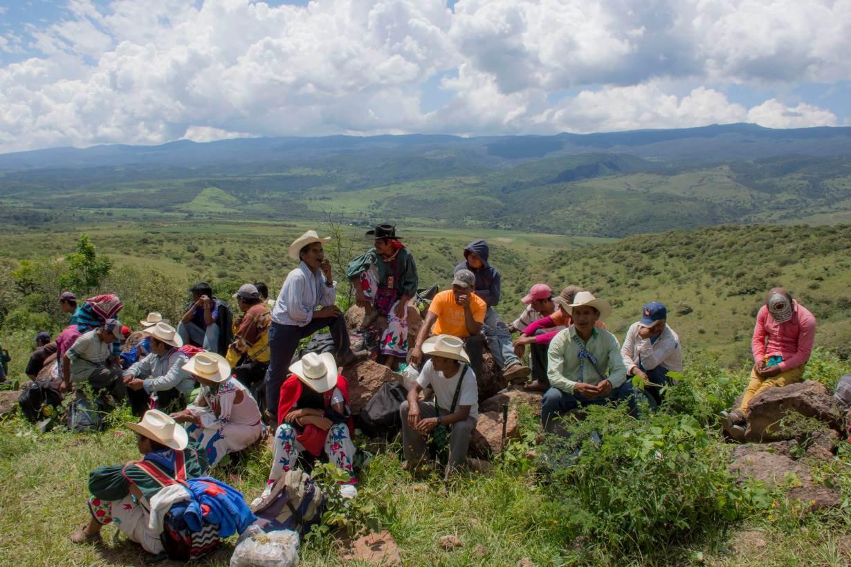 Mexico activists killed Jalisco