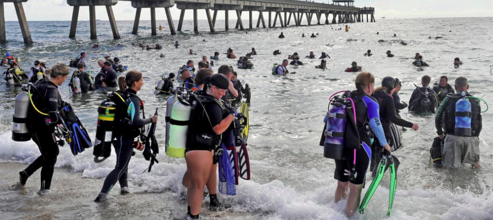 Hundreds of Divers Just Set the World Record for Largest Underwater Cleanup
