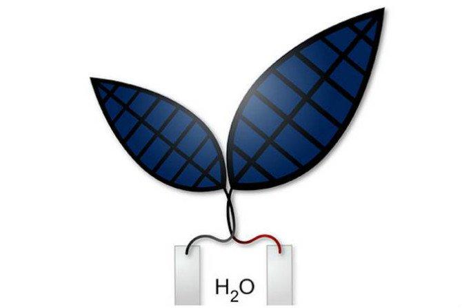 Bionic-Leaf-turns-sunlight-into-fuel- Silver Lab- Jessica Polka - Body 1.jpg