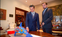 Article: Leonardo DiCaprio Just Got Mexico to Save the Endangered Vaquita Porpoise