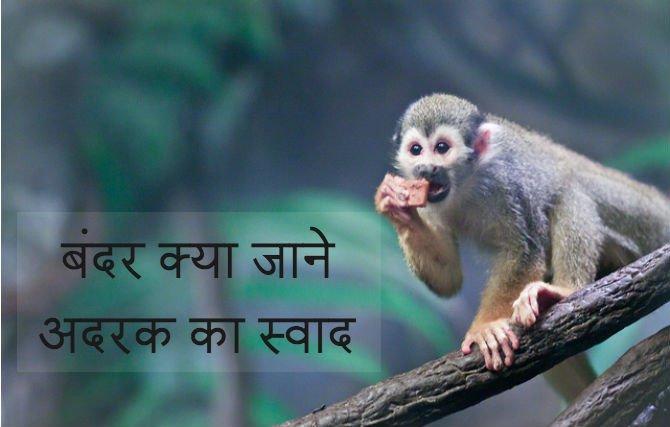 11-interestin-idioms-b5-Hindi.jpg