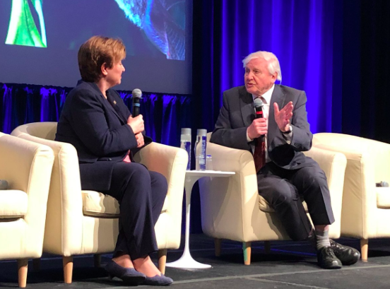 Sir David Attenborough Calls for Global Laws to Protect the Oceans