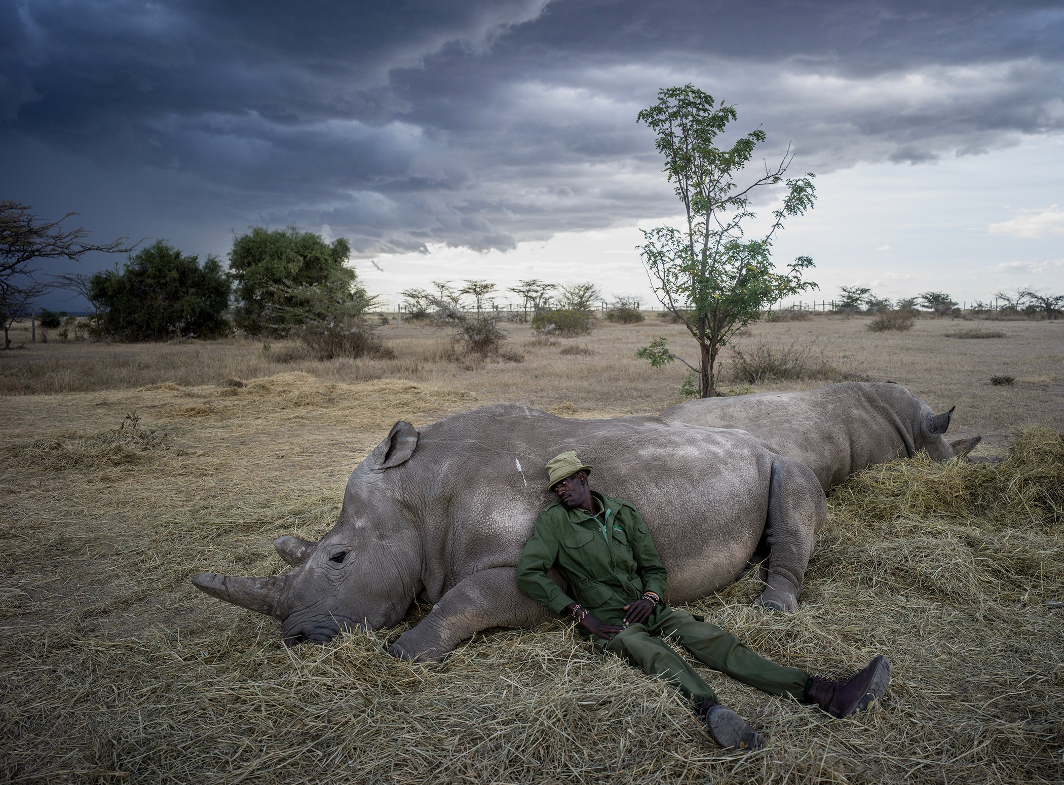 The Last Remaining Northern White Rhinos_016.jpg