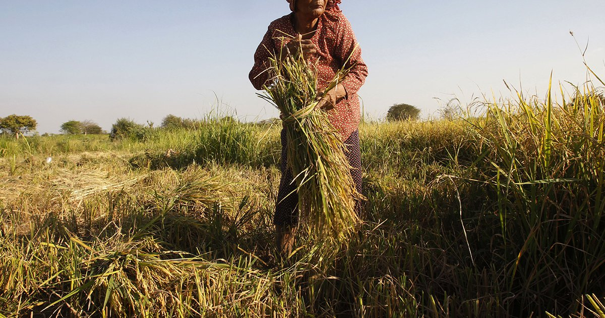 World Leaders and Global Citizens Champion Fund to Support Farmers and End Rural Poverty