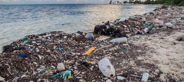 Protégeons nos océans! Prévenons la pollution plastique des océans