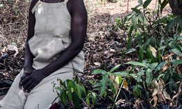 Article: Hundreds of Men Convicted of Gender-Based Violence in Ugandan Special Court Sessions