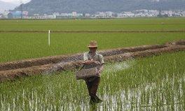 Article: South Korea Gives Major Aid Package to North Korea Amid Hunger Crisis
