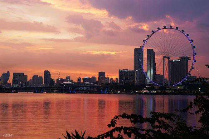 singapore edited.jpg
