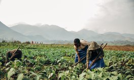 Article: Celebrating a Year of Success for the Global Food Security Act