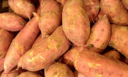 Article: How Farmers in Central Kenya Are Tackling Malnutrition With Sweet Potatoes