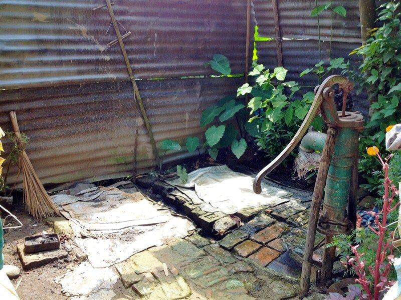 Assam-tea-toilet.jpg