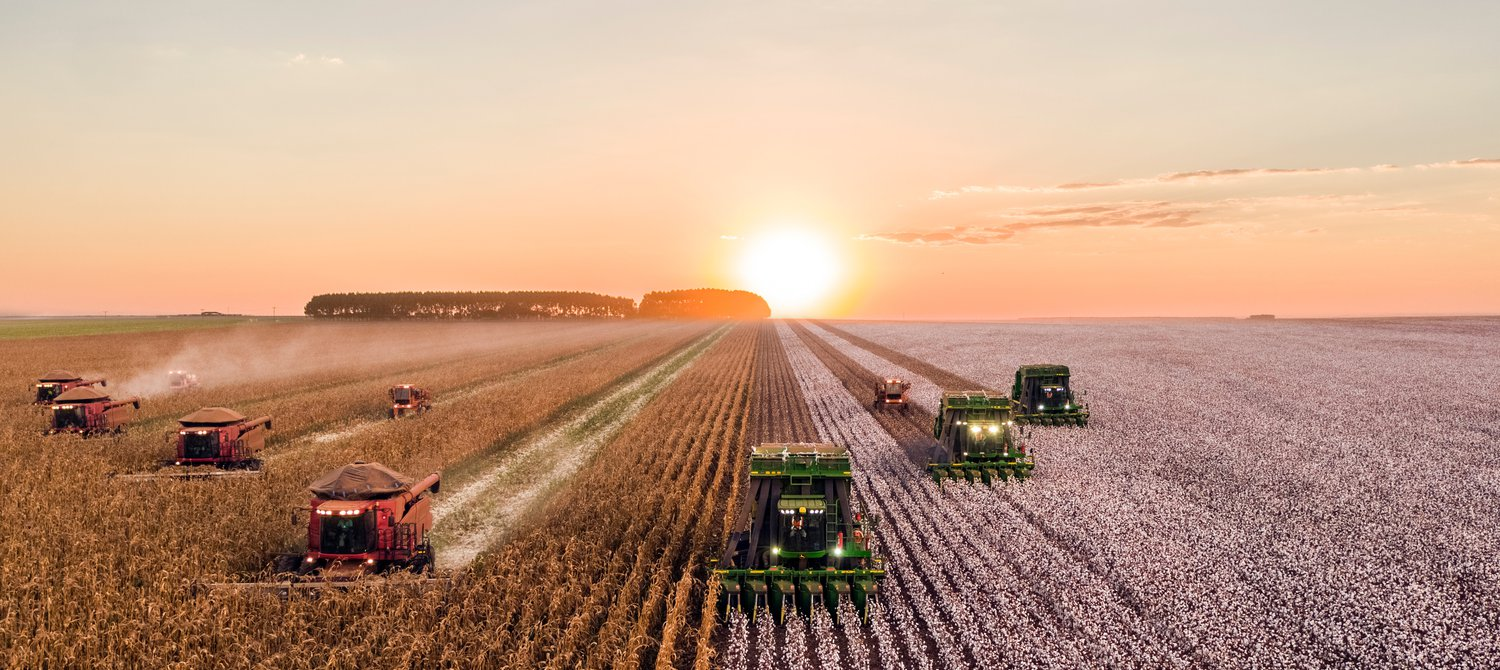World Must Transform Agriculture or Face Unrest, Scientists Warn