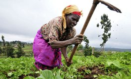 Article: New Service Predicts Rainfall, Helps 80,000 African Farmers