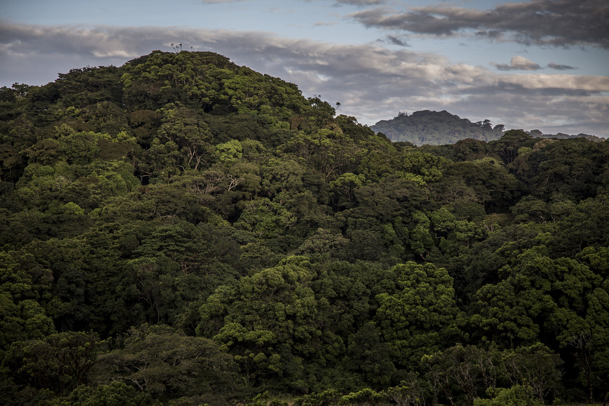 Chyulu Hills-Kenya-Conservation-Covid-19-Impacts-004.jpg