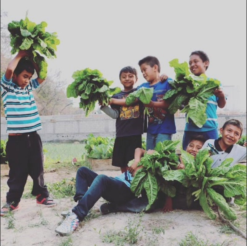 Children with Veggies.jpg