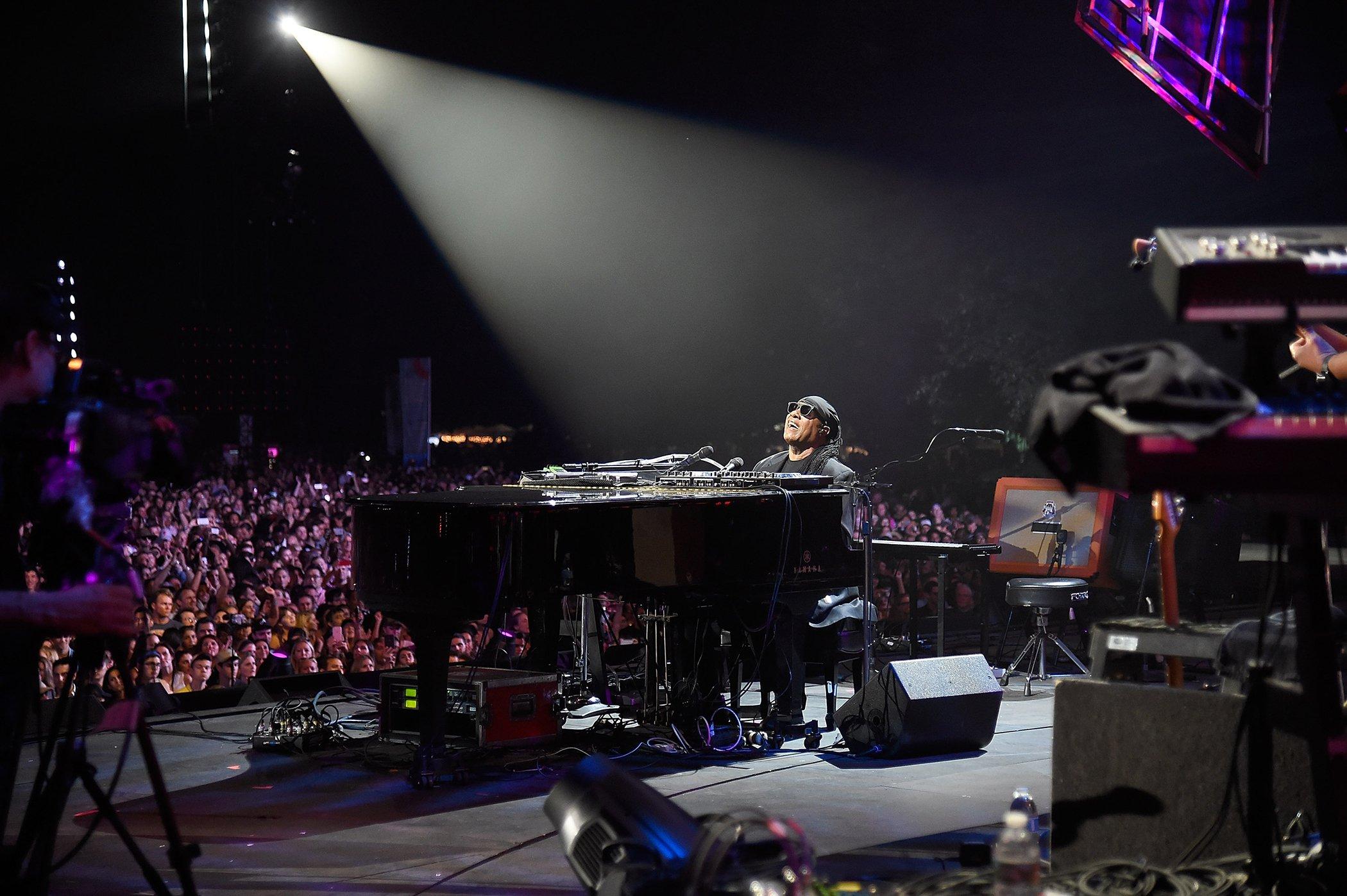 Stevie Wonder-Celebrities-Vegan-Environment.jpg
