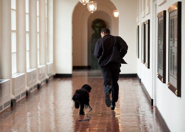 obama-44-photos-gc-jog3.jpg