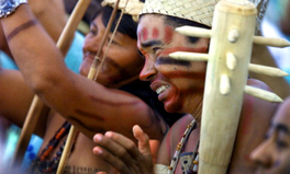 Article: This Indigenous Group Takes Brazil to Court in Landmark Case