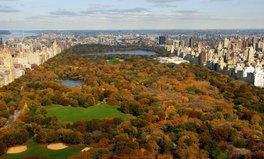 Article: What makes a good public park?