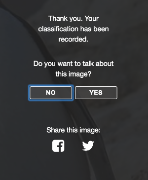 do you want to talk about your image.png