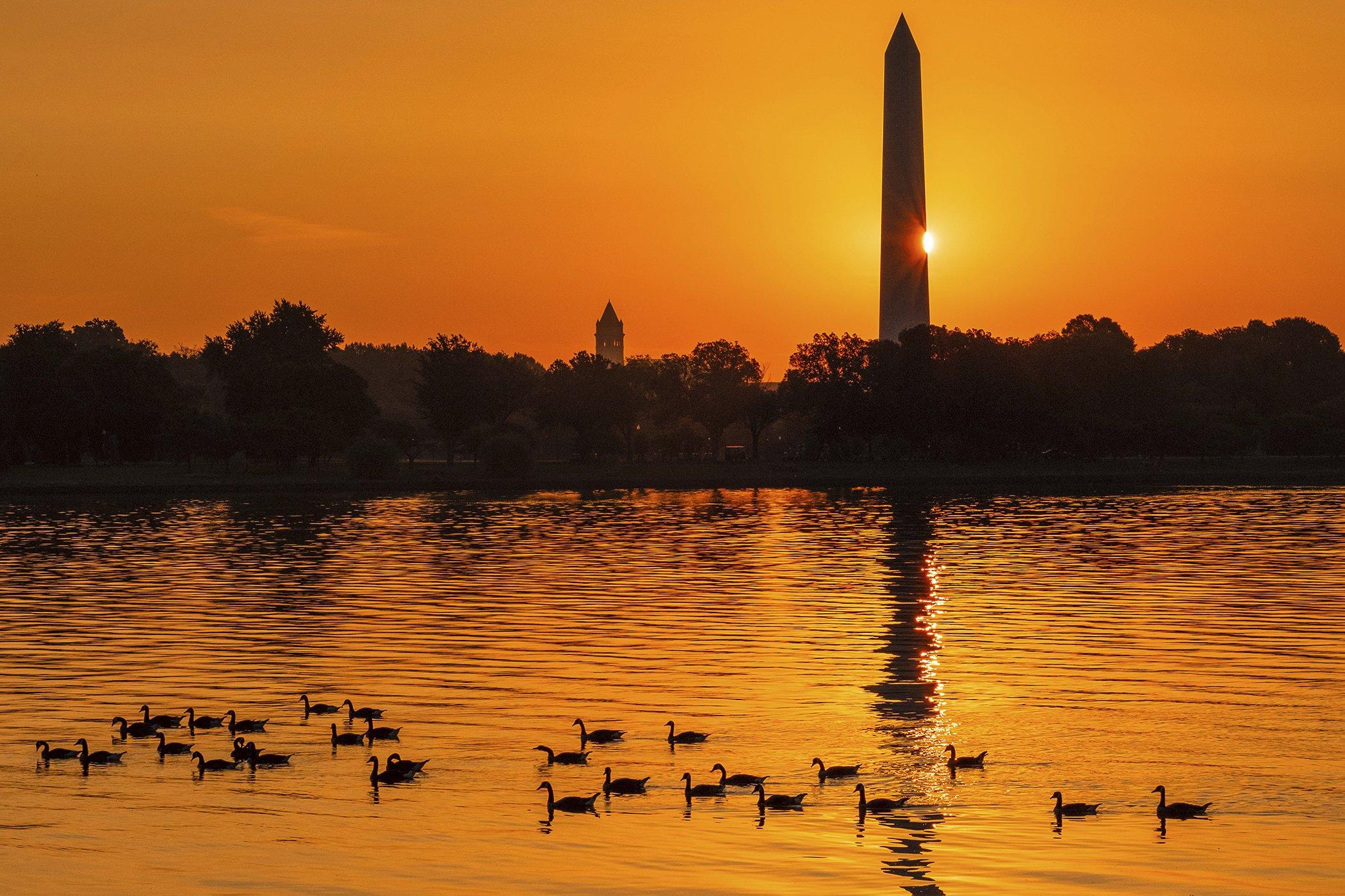 Environmental-Photos-July-WashingtonDC-Heat.jpg